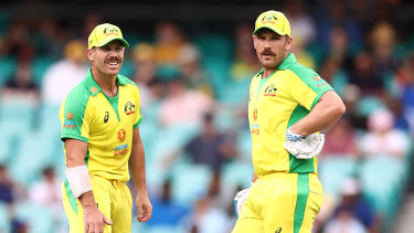David Warner and Aaron Finch have both set the 2023 World Cup as potential swansongs from the white-ball game.