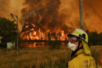 Climate change is predicted to cause more bushfires.