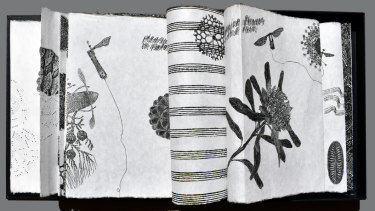 Dianne Fogwell,<i>Pollen Musica Continuum - infinite</i> (2018), detail.