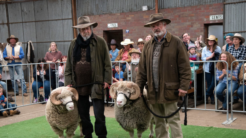 Could this be the best Aussie sheep movie since Babe?