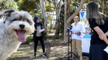 More room to roam: minister unveils $15m plan for new parks