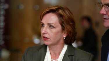 Diane Beamer was a NSW Labor MP and is running for preselection in Lindsay.