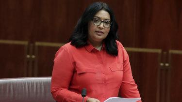 Mehreen Faruqi will return to the Senate for the Greens, alongside five new NSW senators.