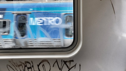 Pair ordered to clean up act after 'ugly' train tagging spree