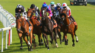 There is a seven-race card at Hawkesbury today.