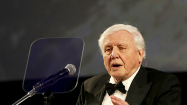 """Sir David Attenborough, speaking at the premiere of """"Our Planet"""" at the Natural History Museum in London, in April, 2019."""