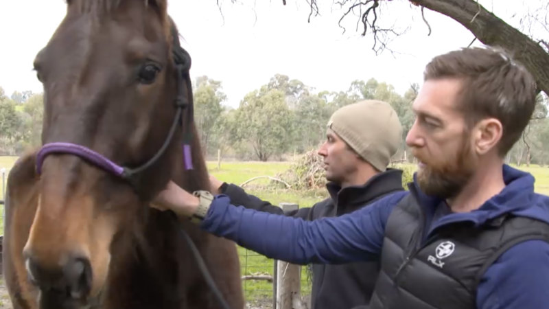 For a fleeting moment on horseback, SAS medic Dusty can escape the demons of war