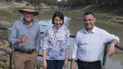 Deputy Premier Barilaro intervenes to stop new 'koala wars' outbreak