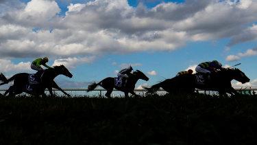 Racing returns to Tamworth on Monday.