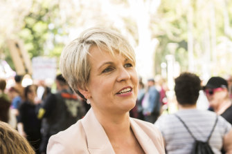 Federal Labor MP Tanya Plibersek at the abortion rally in Sydney.