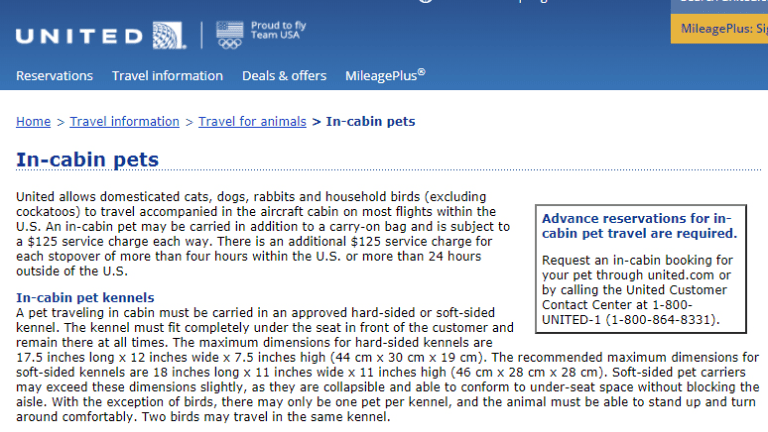 United Airlines' conditions on travelling with in-cabin pets from its website.