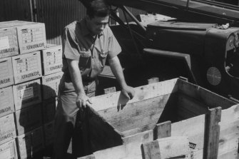 PanAm service representative Gary Hatch looking at crate from which he freed stowaway Brian Robson.