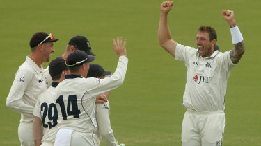 Victorian teammates rush to celebrate with James Pattinson after his dismissal of Peter Nevill.