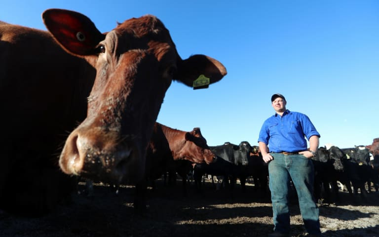 Jason Maloney has spoken out about how much the drought is affecting his dairy farm.