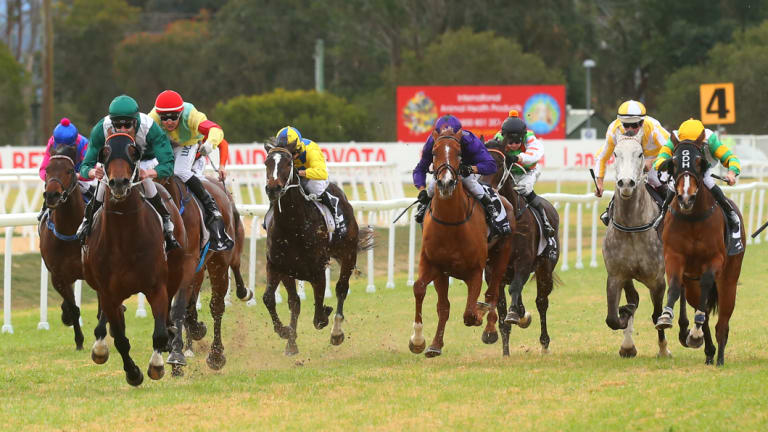 A good track is expected when racing returns to Hawkesbury on Thursday.