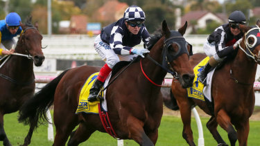 Craig Williams rides Order of Command to victory in race 8 at Caulfield on Saturday.