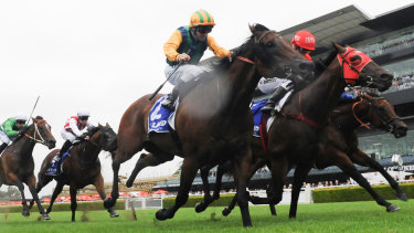 Challenge accepted: Ball Of Muscle, left, and Redzel eyeball each other nearing the post.