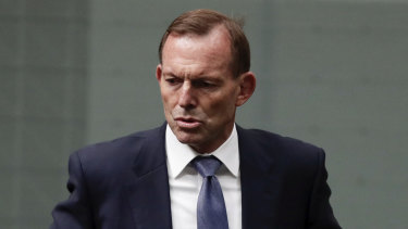 "Tony Abbott said his campaign to retain the seat of Warringah was ""gathering steam""."