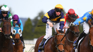 Eight races are on the card at Moruya on Sunday.