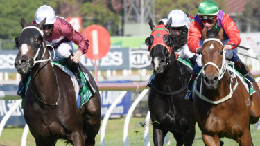 Well travelled: Dia De Reyes, with  James McDonald in the saddle, wins   a Highway at Rosehill in May.