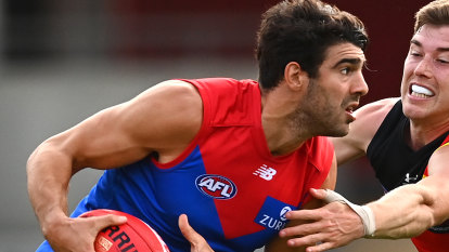 Petracca crowned Dees' best and fairest