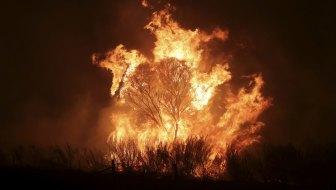 A bushfire burning south of Canberra last year.