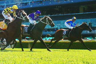 She's Ideel will look to add to the Baker family legacy in the Sydney Cup.