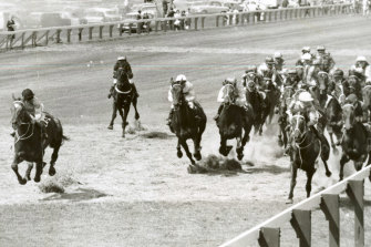 The 1963 Melbourne Cup field.