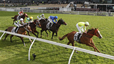 Nash Rawiller on Eduardo, right, wins the Missile Stakes at Rosehill Gardens.