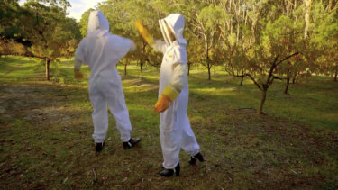 Our favourite bit of the beekeeping date? When Cummins, left, and Tenille high-fived and missed.