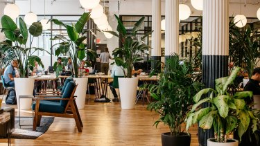 WeWork coworking headquarters in New York is one space with natural light and office plants.