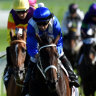 Ill Wind: Winx streak consigns a Magic Man to footnote in history