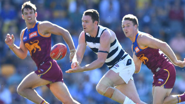 Top Cat: Geelong's Patrick Dangerfied (centre) could pick up his second Brownlow Medal.