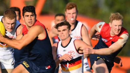 Petracca extends contract to free agency