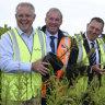 Australian Prime Minister Scott Morrison, Senator Richard Colbeck and Liberal candidate for Braddon Gavin Pearce pose for photographs during a visit to Forico Nursery in Somerset, Tasmania.