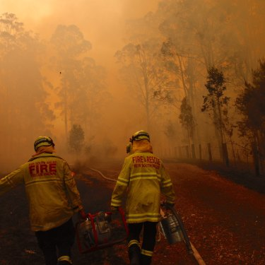 Firefighters north of Forster near the junction of the Pacific Highway on November 8.
