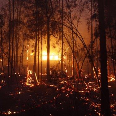 The Hillville fire on November 8.