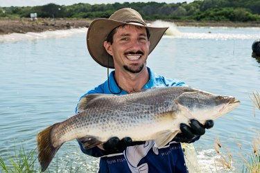 Dan Richards farm barra barramundi silver pond Chief executive of Humpty Doo Barramundi, Dan Richards. Richards' Northern Territory farm is certified sustainable by Best Aquaculture Practices.