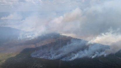 Firefighters hopeful of saving Fraser Island resort, unique rainforests