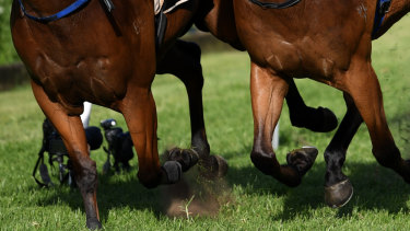 Warm, partly cloudy weather is expected for Goulburn, with a good track, on Sunday.