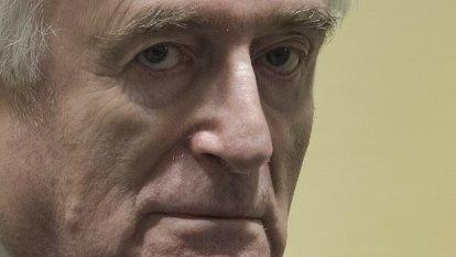 Bosnian Serb leader Karadzic jailed for life over genocidal massacres