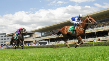 Daylight second: Noble Boy puts a gap into them in the Highway Handicap.