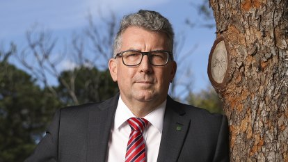 Minister vetoes advice to loan $280m to wind farm but company to push ahead