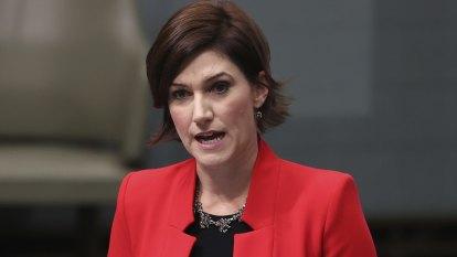 Liberal MP Nicolle Flint announces she's quitting federal politics