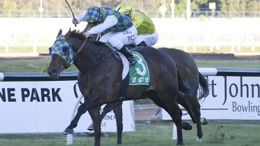 Prime Candidate beat several highly-fancied types home at Rosehill on Saturday.