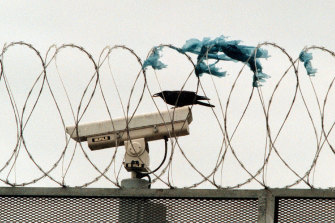 Until recently, Corrections Victoria relied on guards and CCTV to detect drone contraband drops.