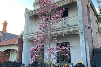 At this time of the year the magnolias are a definite highlight whilst out doing our 10,000 steps.