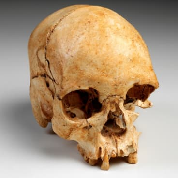 Luzia's 11,500-year-old skull was found along with her thigh and hip bones 1975. She is believed to have died aged 25.