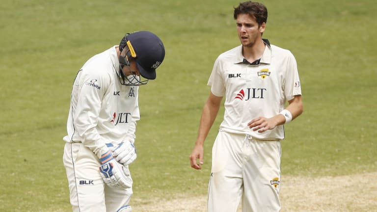 Jyhe Richardson (right) checks on Nic Maddinson after he was struck on the arm by a bouncer.