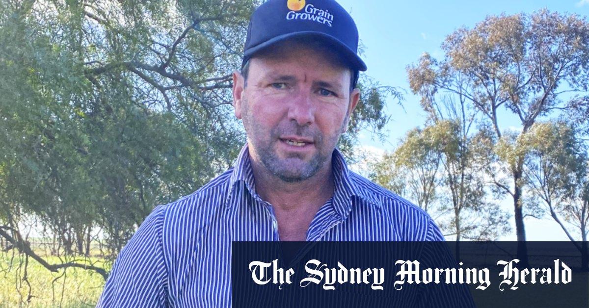 Farmers back Australia taking China to WTO over barley – Sydney Morning Herald